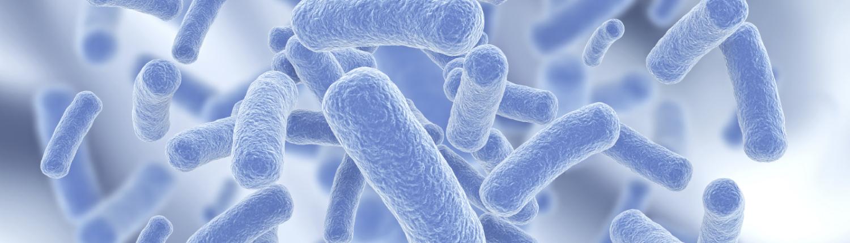 Legionella-Risk-Assessment